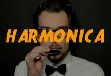 Dạy kèm Harmonica tại quận 11